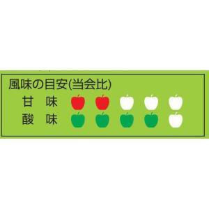りんごジュース 青森 あおもりねぶた缶 すっぱいタイプ 195g缶×30本入|jaaoren|03