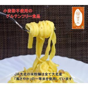 グルテンフリー米粉ぱすた(2食入り)|jadaihoku