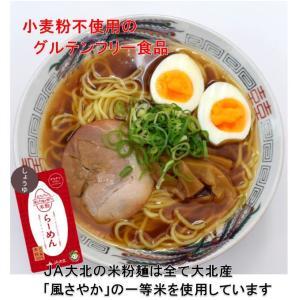 グルテンフリー米粉ラーメン(グルテンフリーの醤油スープ付)(2食入り)|jadaihoku