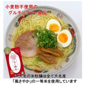 グルテンフリー米粉ラーメン(グルテンフリーの塩スープ付)(2食入り)|jadaihoku