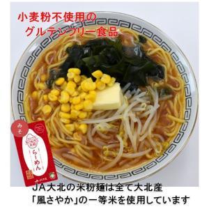 グルテンフリー米粉ラーメン(グルテンフリーの赤味噌スープ付)(2食入り)|jadaihoku