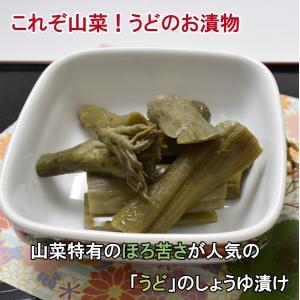山うど木の葉漬(うどしょうゆ漬)(160g)|jadaihoku