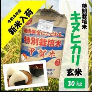 滋賀県産近江米 JAこうか 特別栽培米 キヌヒカリ 玄米 30kg|jakouka
