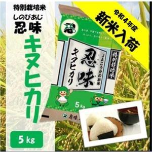 滋賀県産近江米 JAこうか 特別栽培米 忍味 キヌヒカリ5kg お米 白米|jakouka