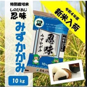 滋賀県産近江米 JAこうか 特別栽培米 忍味 みずかがみ10kg お米 白米|jakouka