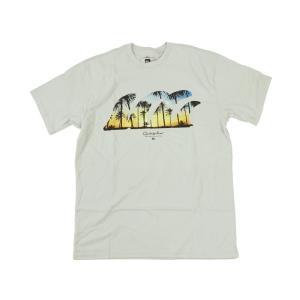 クイックシルバー QUIKSILVER 半袖Tシャツ クアッドフィン ハイライズ (QUAD FIN)|jalana