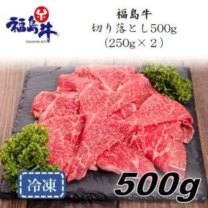 「福島牛」切り落とし500g(250g×2パック)〈冷凍便〉|jalcf