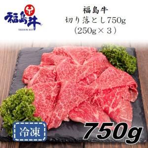 「福島牛」切り落とし750g(250g×3パック)〈冷凍便〉|jalcf