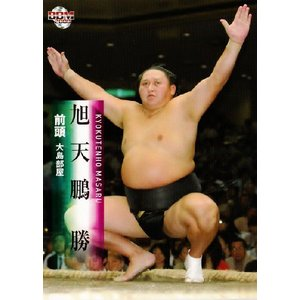 BBM 大相撲カード 2008 レギュラー 18 旭天鵬 勝|jambalaya