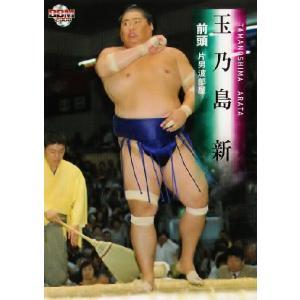 BBM 大相撲カード 2008 レギュラー 21 玉乃島 新|jambalaya