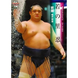 BBM 大相撲カード 2008 レギュラー 25 若の里 忍|jambalaya