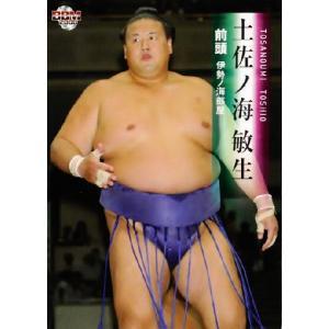 BBM 大相撲カード 2008 レギュラー 31 土佐ノ海 敏生|jambalaya