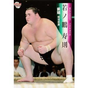 BBM 大相撲カード 2008 レギュラー 35 若ノ鵬 寿則|jambalaya
