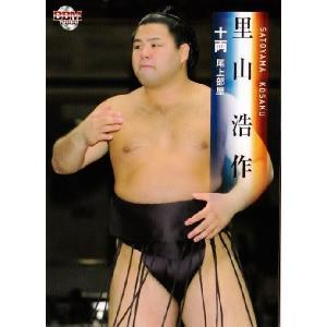 BBM 大相撲カード 2008 レギュラー 58 里山 浩作|jambalaya