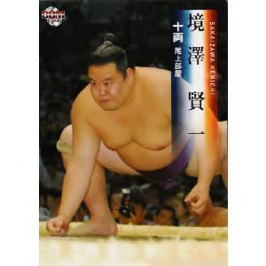 BBM 大相撲カード 2008 レギュラ...