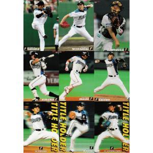 【北海道日本ハムファイターズ/全9種】カルビー 2013プロ野球チップス第1弾 [チーム別レギュラーコンプリートセット](※インサート・スペシャルカードは除く)|jambalaya