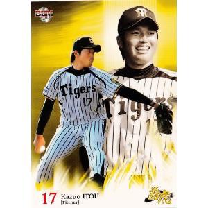 BBM 阪神タイガース カードセット 「若虎2013」 レギュラー 02 伊藤和雄|jambalaya
