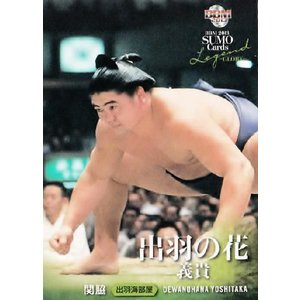 BBM2013 大相撲カードレジェンド 〜GLORY〜 レギュラー 30 関脇 出羽の花 義貴 jambalaya