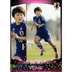 サッカー日本代表オフィシャルカード2014 レギュラー 【な...