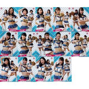 【日本ハム/FIGHTERS GIRL】BBM プロ野球チアリーダーカード2019 -華- レギュラーチームコンプリートセット 全14種|jambalaya