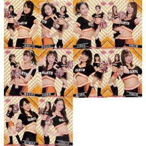 【巨人/Venus】BBM プロ野球チアリーダーカード2019 -舞- レギュラーチームコンプリートセット 全10種|jambalaya