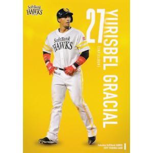 43 【Y.グラシアル】2019 福岡ソフトバンクホークス ユーズドボールシリーズ レギュラー