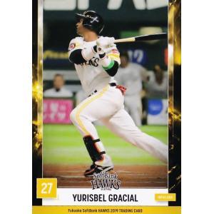 45 【Y.グラシアル】2019 福岡ソフトバンクホークス ユーズドボールシリーズ レギュラー