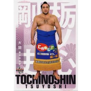 5 【栃ノ心 剛史】BBM2019 大相撲カード 「風」 レギュラー|jambalaya