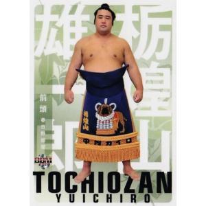 16 【栃煌山 雄一郎】BBM2019 大相撲カード 「風」 レギュラー|jambalaya