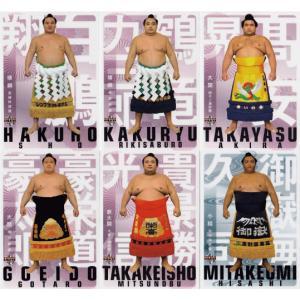 【レギュラーコンプリートセット】BBM2019 大相撲カード 「風」全81種 jambalaya
