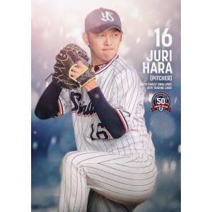 18 【原樹理】2019 東京ヤクルトスワローズ ユーズドボールシリーズ レギュラー|jambalaya