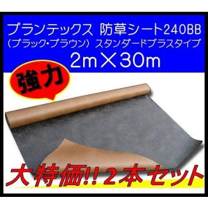 ザバーン プランテックス デュポン社 防草シート 240BB プランテックス240BB 2m×30m PT-240BB2.0 ブラック・ブラウン 2本セット 大特価|janet