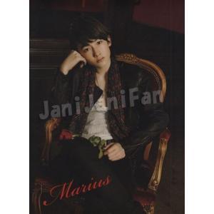 クリアファイル ★ マリウス葉 「Sexy Zone First Concert 2012」 [szgd080]|janijanifan