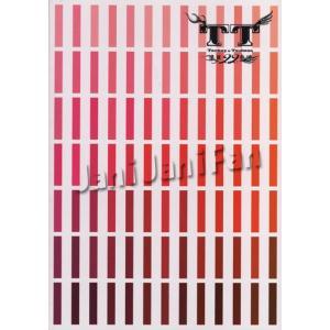 パンフレット ★ タッキー&翼 2004 「滝翼22才春魂」 [ttpf009]|janijanifan