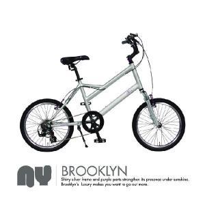 4ING 自転車 品番 NY (SILVER×PURPLE)(BLACK×GOLD) (BROWN×YELLOW) 20インチ|janis