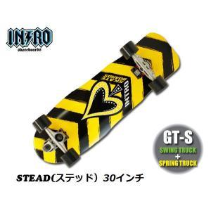 INTRO Skatebords (イントロ スケートボード)  30 32 34 36インチ|janis|02
