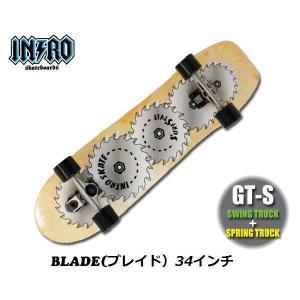 INTRO Skatebords (イントロ スケートボード)  30 32 34 36インチ|janis|04