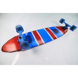 サーフ スケートボード ロスト DOUBLE BLUNT 30,25|janis|02