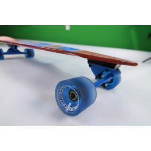 サーフ スケートボード ロスト DOUBLE BLUNT 30,25|janis|04