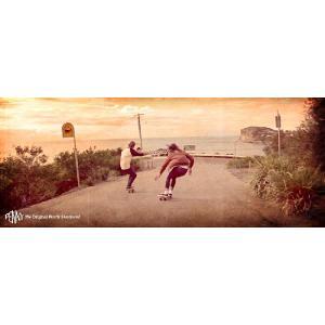 Penny Skateboards(ペニー スケートボード)|janis|02