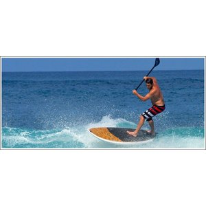 NSP surfboards スタンドアップパドルボード 品番 ELEMENTS CRUISE SUP  Stand Up Paddle  SUP 10'2