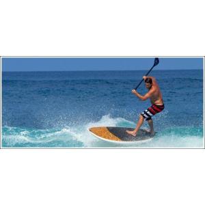 NSP surfboards スタンドアップパドルボード 品番 ELEMENTS CRUISE SUP   9'8