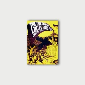 The Innermost Limites of Pure Fun   DVD janis