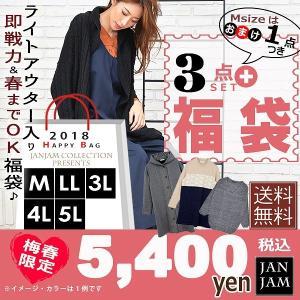 【送料無料※沖縄対象外】大きいサイズ レディース 豪華福袋 ...