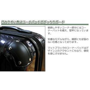大型スーツケース SKY ROVER AN Lサイズ japan-suitcase 04
