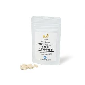 乳酸菌EC-12 野草醗酵エキス配合サプリメント 目安15~30日分 乳酸菌 野草醗酵酵素|japan-supplements