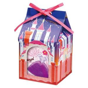 タオルハンカチ プレゼント 子供 ディズニー パーソナルギフト ラプンツェルドレス WD180523...