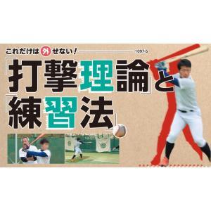 これだけは外せない「打撃理論」と「練習法」 野球 DVD 履正社高校 1097-S 全1巻