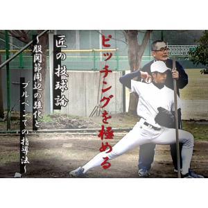 匠の投球論 仲里清 投手指導 DVD 硬式野球 781-S  全1巻