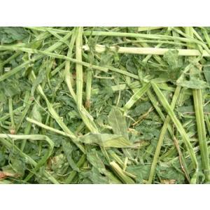 アメリカ産ホースプレミアムアルファルファ牧草1kg(うさぎ等小動物向け)